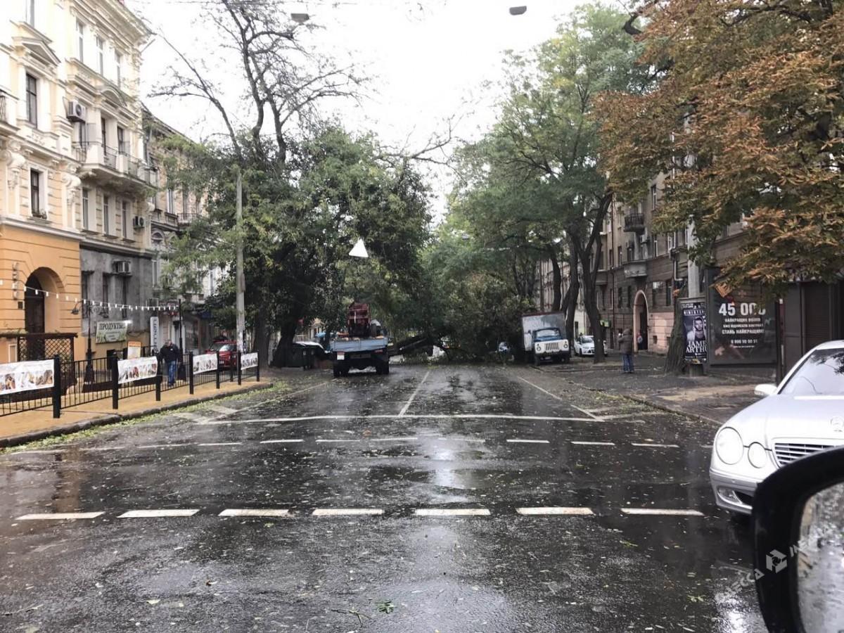 ВОдесской области дерево упало намаршрутку