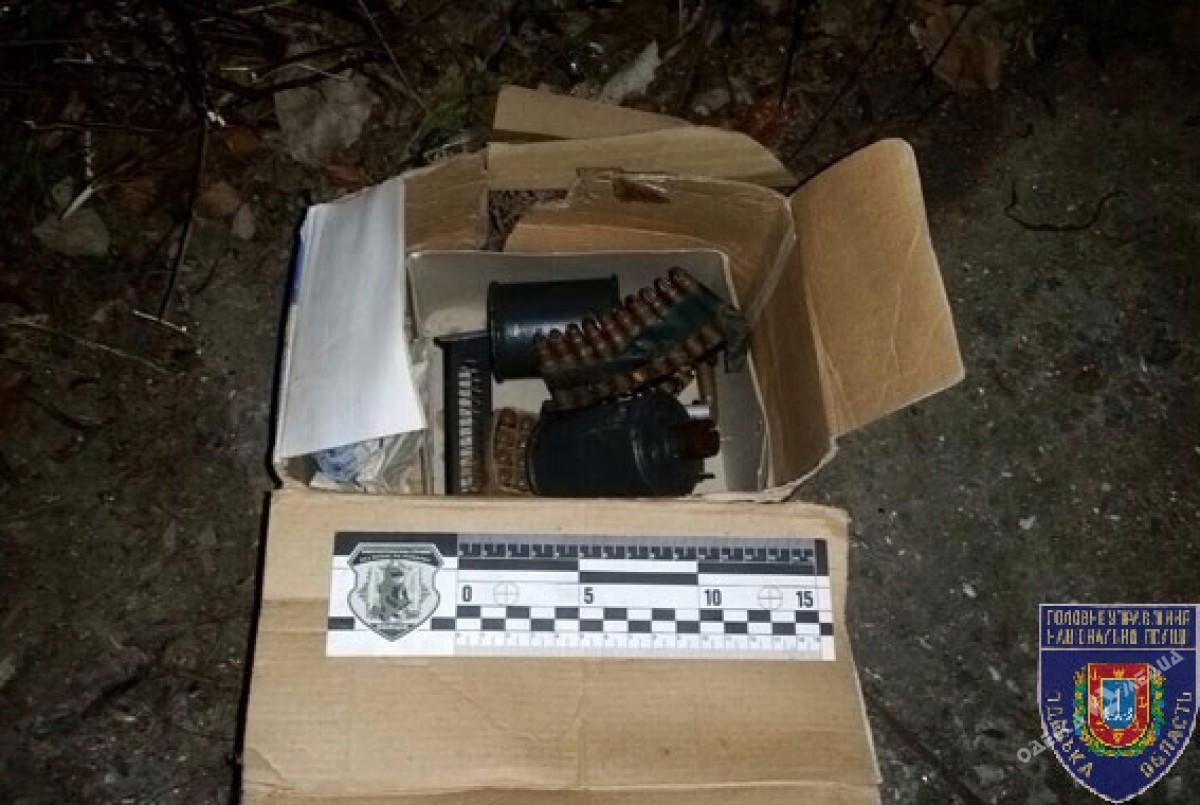 Водесском дворе обнаружили гранаты