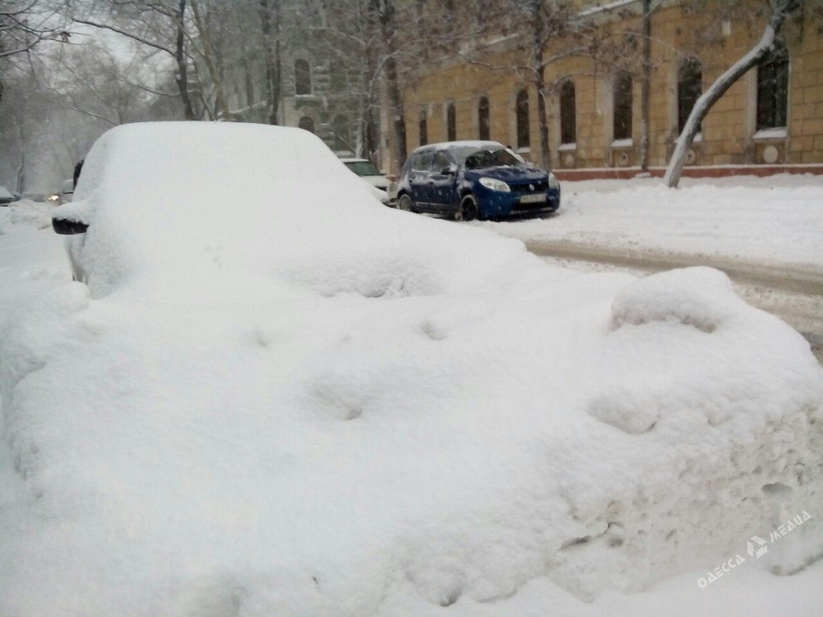 6e5f7ff460d895e79b9bc2678ceff6e7 Зимняя Одесса: пес-снеговик, одинокий Дюк и машины в сугробах