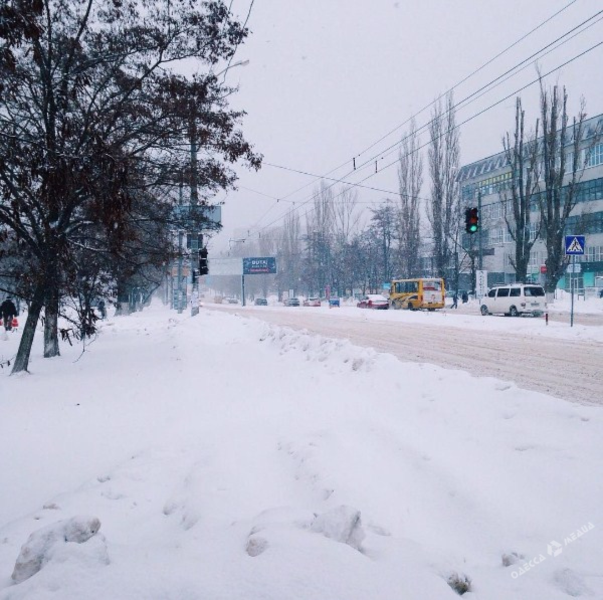 978db7750f88d86058bb52a66c34f07f Зимняя Одесса: пес-снеговик, одинокий Дюк и машины в сугробах