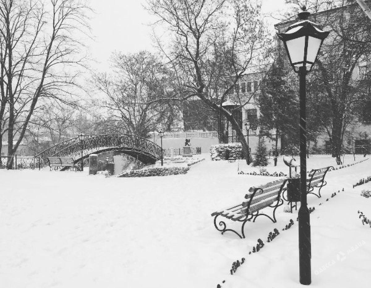 ad2f2b9f55104667cdbfbebe26f10b6d Зимняя Одесса: пес-снеговик, одинокий Дюк и машины в сугробах