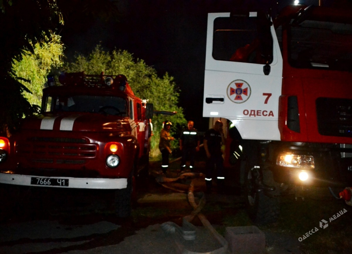 Cотрудники экстренных служб устранили возгорание вДюковском парке