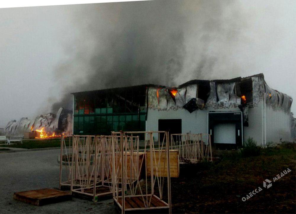Масштабный пожар охватил предприятие в Одесской области (фото)