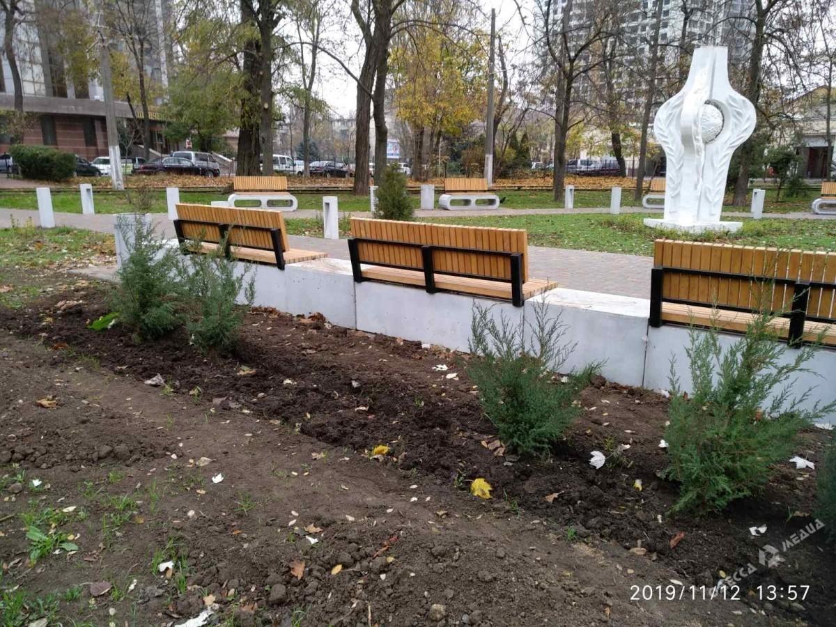 Из одесского сквера «За мир» неизвестные украли новые кусты (фото)