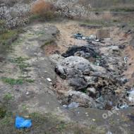 Орнитологический заказник в Одесской области превращается в свалку - Фото №3