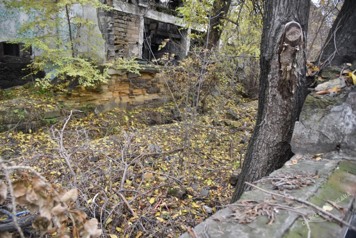 a4cdf4b7d893198159dc3d368123757a Одесса: завод, который был гордостью страны, превратился в развалины