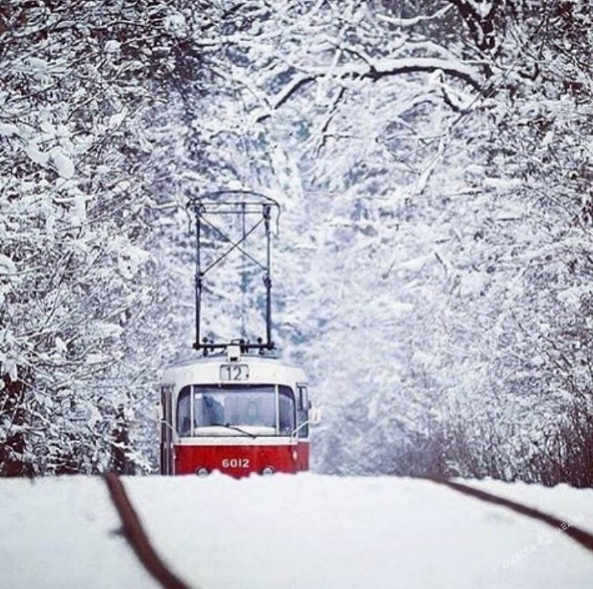 de606fcbfc628dbcd95567b38c61999a Зимняя Одесса: пес-снеговик, одинокий Дюк и машины в сугробах