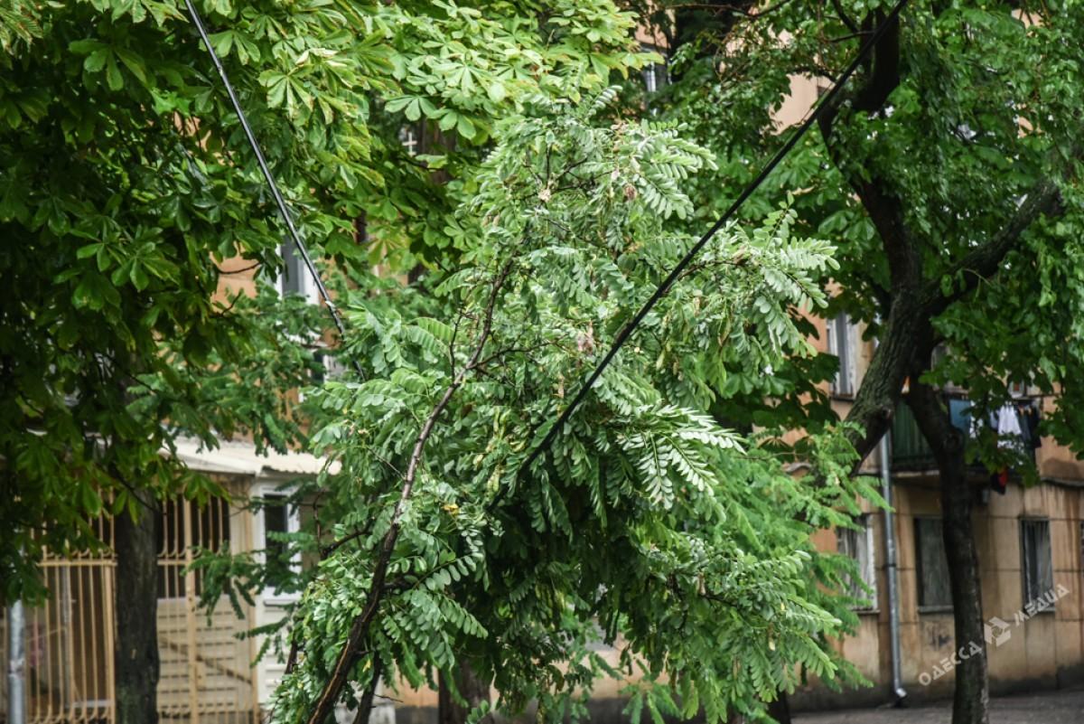 ad3d240b5e921534b4736f4754cda970 Сильный дождь и шквальный ветер застали одесситов врасплох