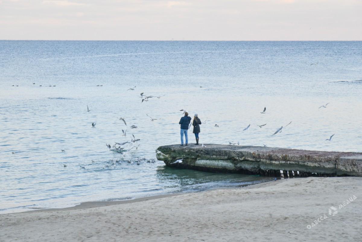 fa23b5acf792f11e8cf9f9b8c1043d5a Последний день осени одесситы встретили на море (ФОТО)